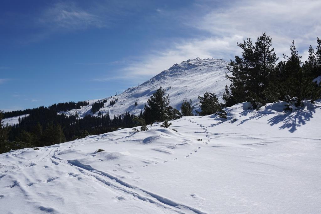 Витоша: топ курорт за любителите на ски и летен преход